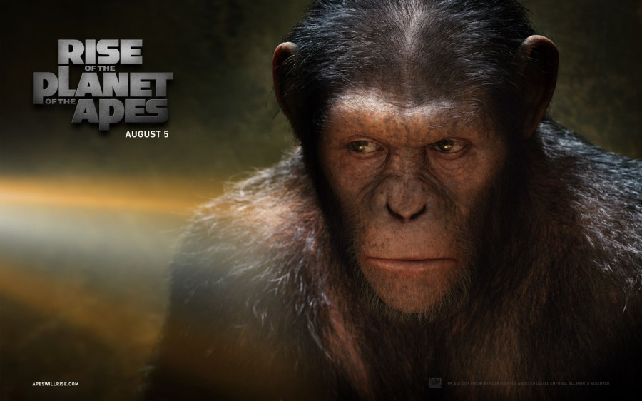 rise-of-the-planet-of-the-apes-002